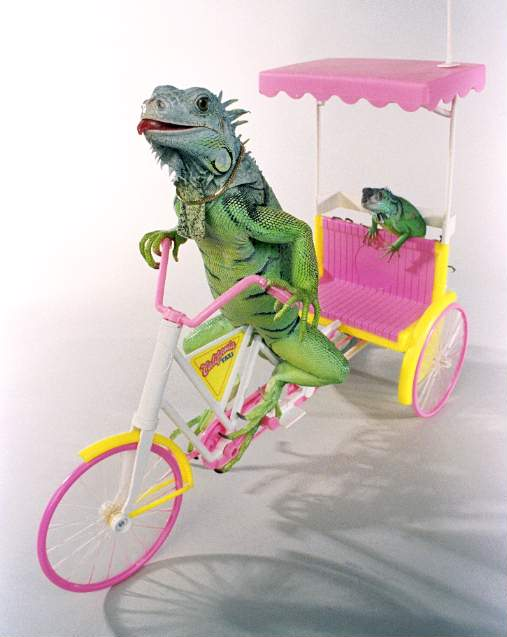 bicycle_for_two_henry_lizardlover_web